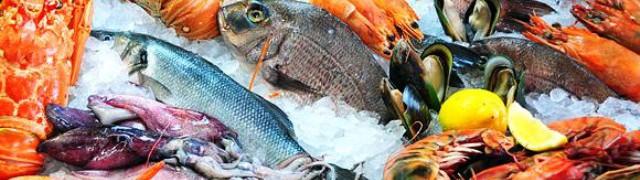 В Мадриде издан справочник основных видов рыб
