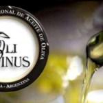 Оливковое масло из Испании произвело фурор в Аргентине