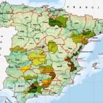 Список производителей оливкового масла в Испании