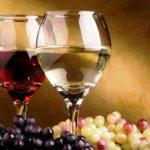 Кастилия-Ла-Манча выделила для дегустации свои «Золотые вина»