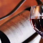 Фестиваль испанских вин в Дании посетили более 1.5 тысяч человек