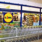 Немецкая компания «Lidl» увеличила закупки испанских продуктов