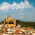 Оливковое масло от «Кастильо де Канена» (Хаэн, Андалусия)