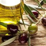 Испания зафиксировала рекордно высокий экспорт оливкового масла