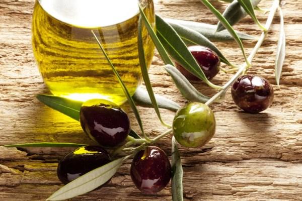 Экспорт оливкового масла