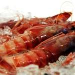 Кулинарный конкурс «Красная креветка» состоится в Дении
